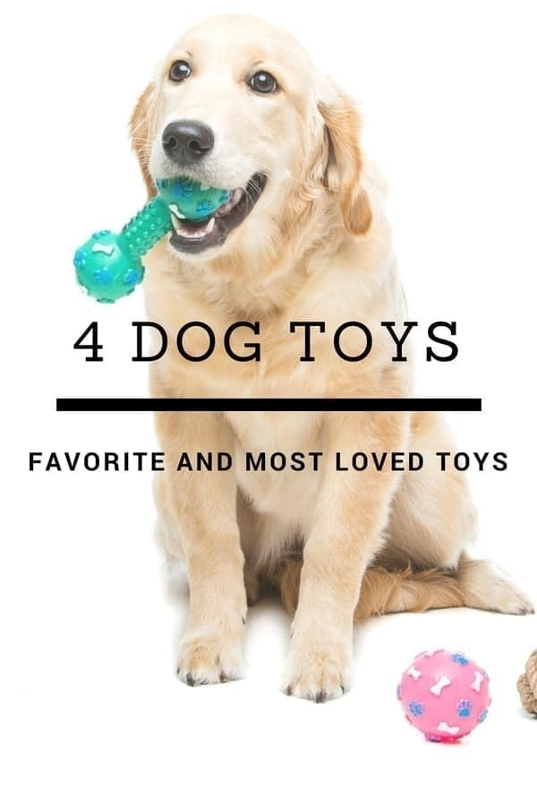 4 Of The Most Loved Dog Toys.