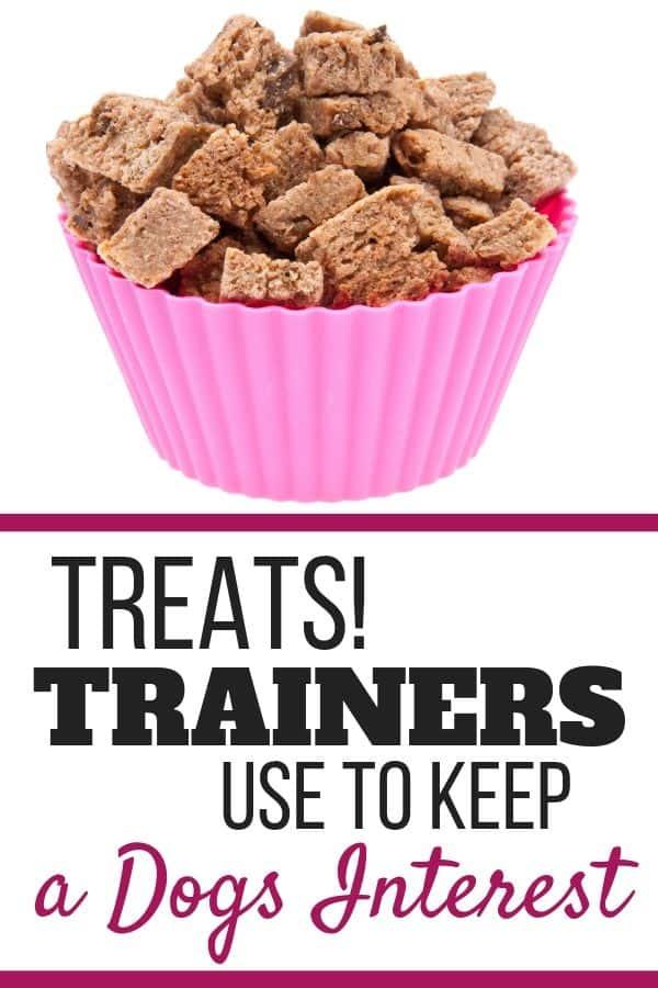 Dog treats trainers use