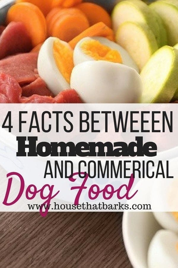 Commerical and Homemade Dog Food