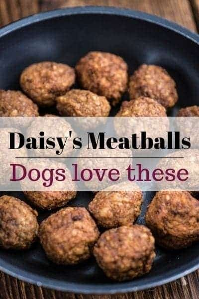 Homemade dog meatballs