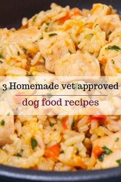vet approved dog recipes