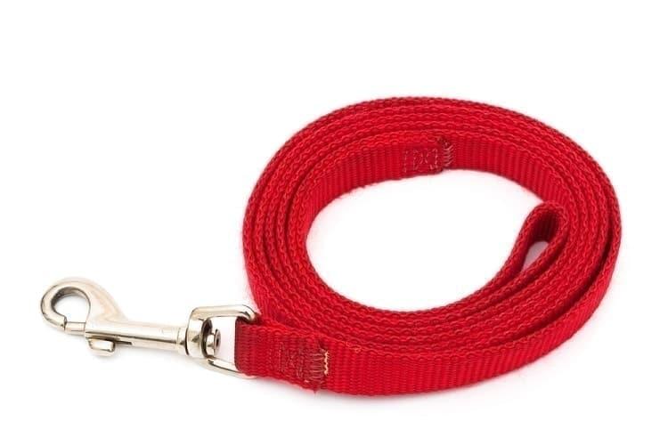 Washing a dog leash