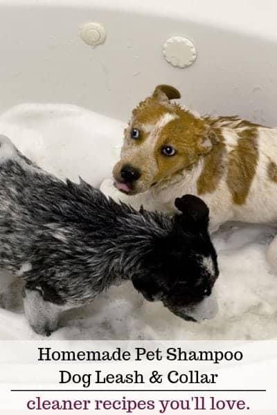 Dog shampoo leash collar cleaner