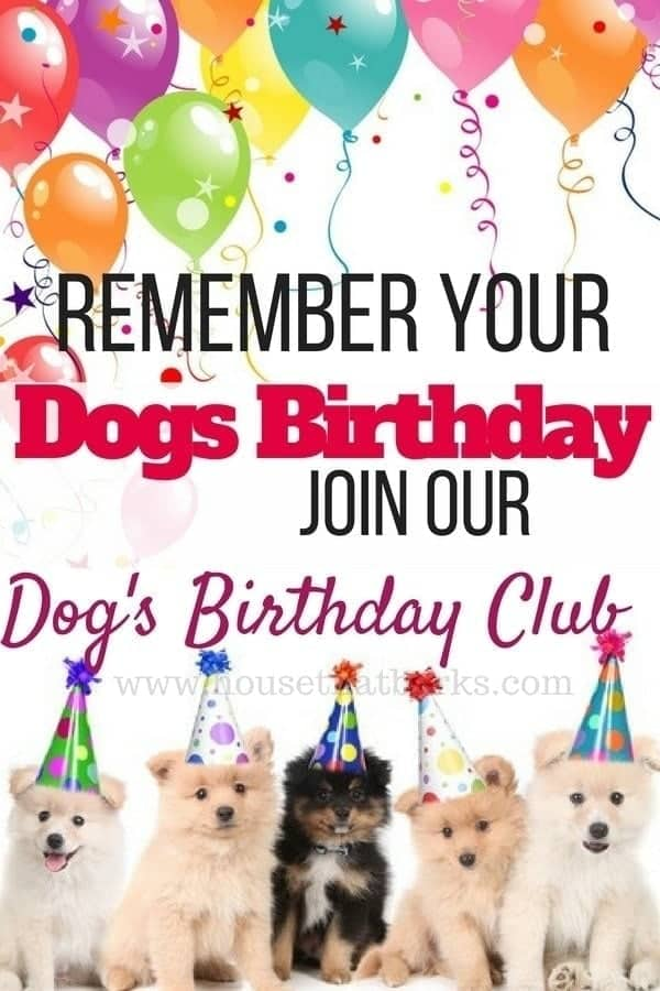 dog birthday reminder