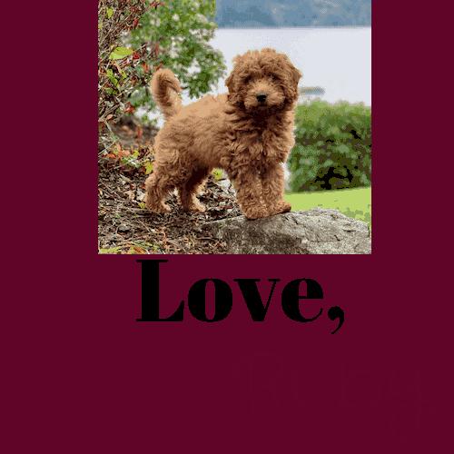 Love Ruby