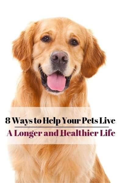 pets live longer