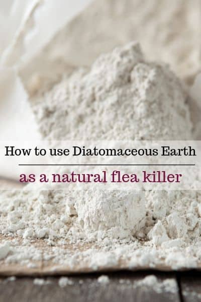 diatomaceous earth for fleas
