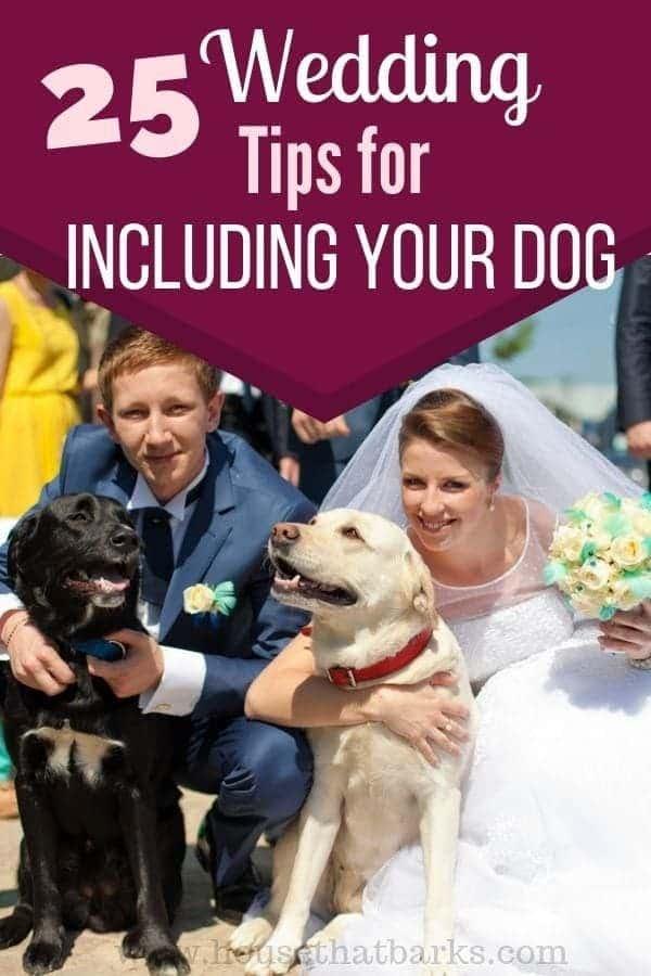 INCLUDE DOGS IN WEDDINGS