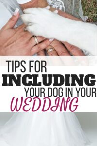 include your dog in wedding