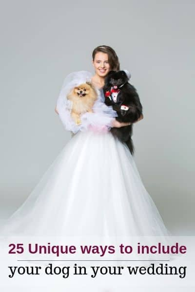 Dogs in weddings.