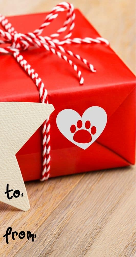 5 Easy DIY Holiday Gifts for Dogs