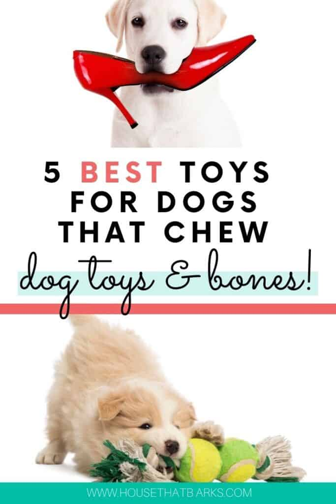 DOG TOYS FOR CHEWERS