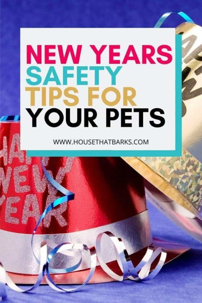 NEW YEAR SAFETY FOR DOGS
