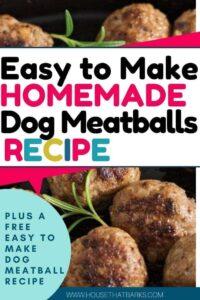 easy to make dog meatballs