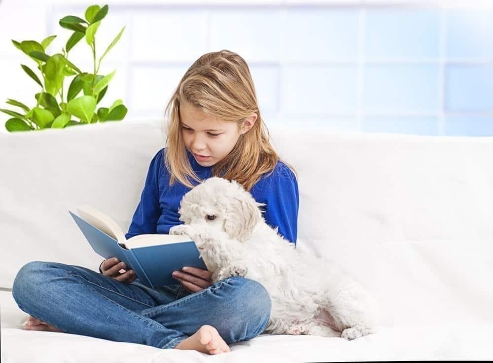 reading dog books to the dog