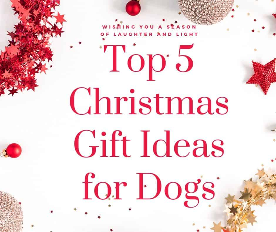 Top 5 Christmas Gift Ideas for Dogs